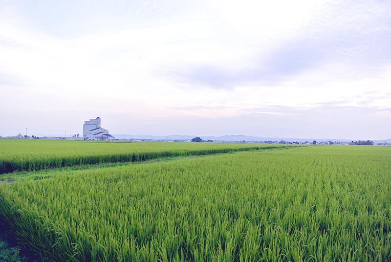 大田明弥1